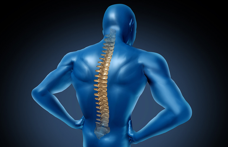 An Introduction to Chiropractic Treatment