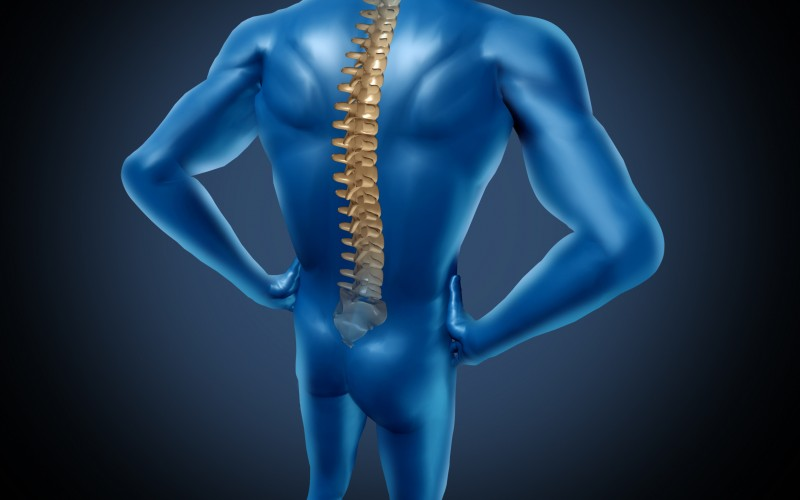 Chiropractic Care Can Keep the Pain Away