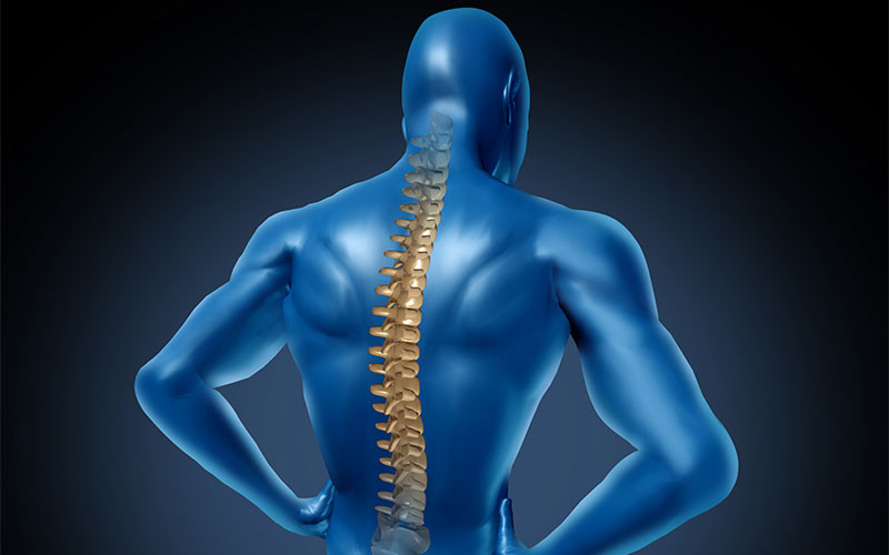 How Chiropractic Care Can Improve Your Spinal Hygiene